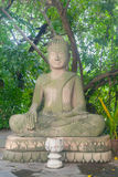 Piedra de Buda y selva tropical de la estatua de mármol en Camboya Batta Fotografía de archivo