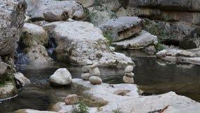 Piedra de la balanza por el río almacen de video