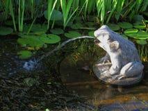 Piedra de la rana en la charca Fotos de archivo