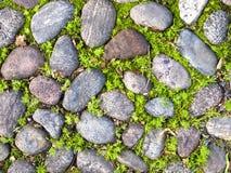 Piedra de la textura en el camino Imagen de archivo