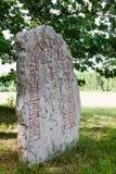 Piedra de las runas Foto de archivo libre de regalías