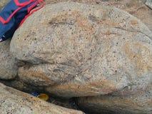 Piedra de los pescados Fotos de archivo