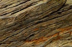 Piedra de madera aterrorizada Imagen de archivo