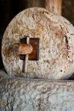 Piedra de molino y prensa del aceite de oliva Fotos de archivo libres de regalías