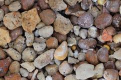Piedra de piedra pómez Foto de archivo libre de regalías