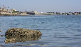 Piedra de Pollusted en agua Foto de archivo