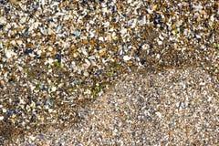 Piedra de Shell y del guijarro Imagen de archivo