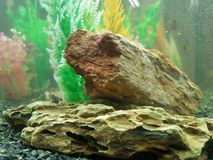 Piedra debajo del agua Imágenes de archivo libres de regalías