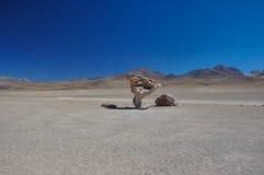 Piedra del Arbol, Sur Lipez, Bolivie du sud Images stock