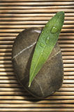 Piedra del balneario Fotos de archivo