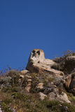Piedra del buho Imagen de archivo