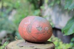 Piedra del gato alrededor abajo de la ciudad en Onomichi Japón Imagen de archivo