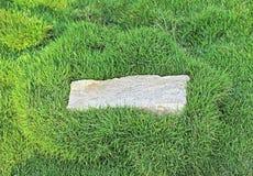 Piedra del granito con la frontera de la hierba Foto de archivo libre de regalías