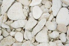 Piedra del mar Fotos de archivo libres de regalías