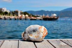 Piedra del mar coloreada fotos de archivo libres de regalías