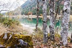 Piedra del musgo con los abedules en un lago de la montaña en otoño Foto de archivo libre de regalías