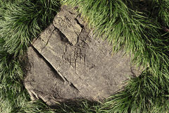 Piedra e hierba Fotos de archivo