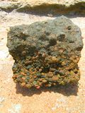 Piedra en la arena Fotos de archivo libres de regalías