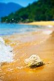 Piedra en la playa. Fotografía de archivo libre de regalías