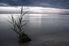 Piedra en una niebla Fotografía de archivo libre de regalías
