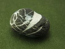 Piedra en zelyo1nom un fondo foto de archivo libre de regalías