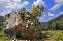 Piedra grande Fotos de archivo
