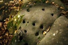 Piedra gris con muchos pequeños agujeros redondos en el bosque, en el fuerte del ` s del diablo de la reserva en la región de Kal imagenes de archivo