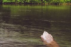 Piedra mojada por la orilla del lago foto de archivo