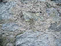 Piedra natural con el fondo concreto Fotos de archivo
