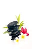 Piedra negra del zen con las flores del frangipani Imágenes de archivo libres de regalías