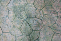 Piedra redonda con Moss Floor Texture Background Círculo de las pavimentadoras del patio Foto de archivo