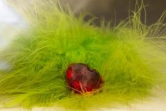 Piedra roja en la forma de corazones en plumas Fotos de archivo