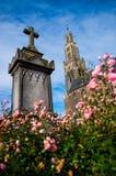 Piedra sepulcral con las rosas rosadas Imagen de archivo libre de regalías