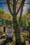 Piedra sepulcral en un cementerio en el otoño imagenes de archivo