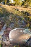 Piedra sepulcral vieja de la vuelta del centrury Foto de archivo libre de regalías