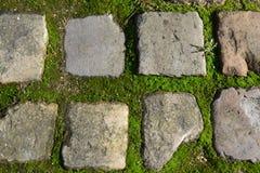 Piedra texturizada Imagen de archivo libre de regalías