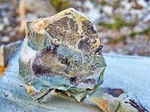 Piedra verde de la turquesa con los fósiles de la planta Imagen de archivo