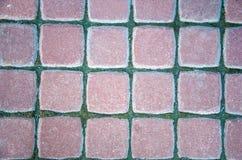 Piedra vieja del pavimento Fotografía de archivo libre de regalías