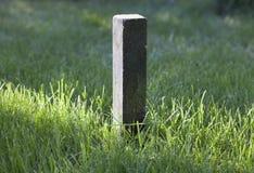 Piedra y rayo de la sol en la hierba Fotos de archivo libres de regalías