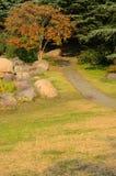 Piedras, árboles y camino Fotografía de archivo libre de regalías