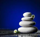 Piedras blancas con el chamomille blanco Foto de archivo libre de regalías