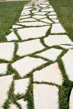 Piedras blancas de la calzada Fotografía de archivo