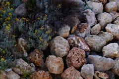 Piedras coloreadas de Mallorca Fotos de archivo