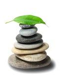 Piedras con gota de la hoja y del agua imagen de archivo libre de regalías
