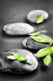 Piedras con las hojas verdes y los descensos del agua Imágenes de archivo libres de regalías