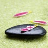 Piedras con los pétalos de la flor Fotografía de archivo libre de regalías