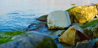 Piedras cubiertas de musgo Foto de archivo libre de regalías