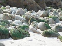 Piedras cubiertas de musgo en una playa fotografía de archivo
