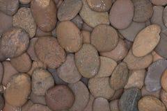 Piedras de la grava del primer para el piso decorativo Fotos de archivo libres de regalías
