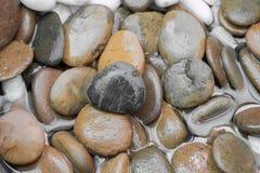 Piedras de la grava del primer para el piso decorativo Fotos de archivo